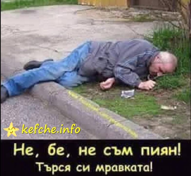Не бе не съм пиян, търся си мравката...