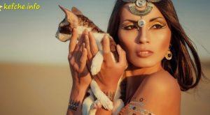 Котките са колонизирали Земята с помощта на хората