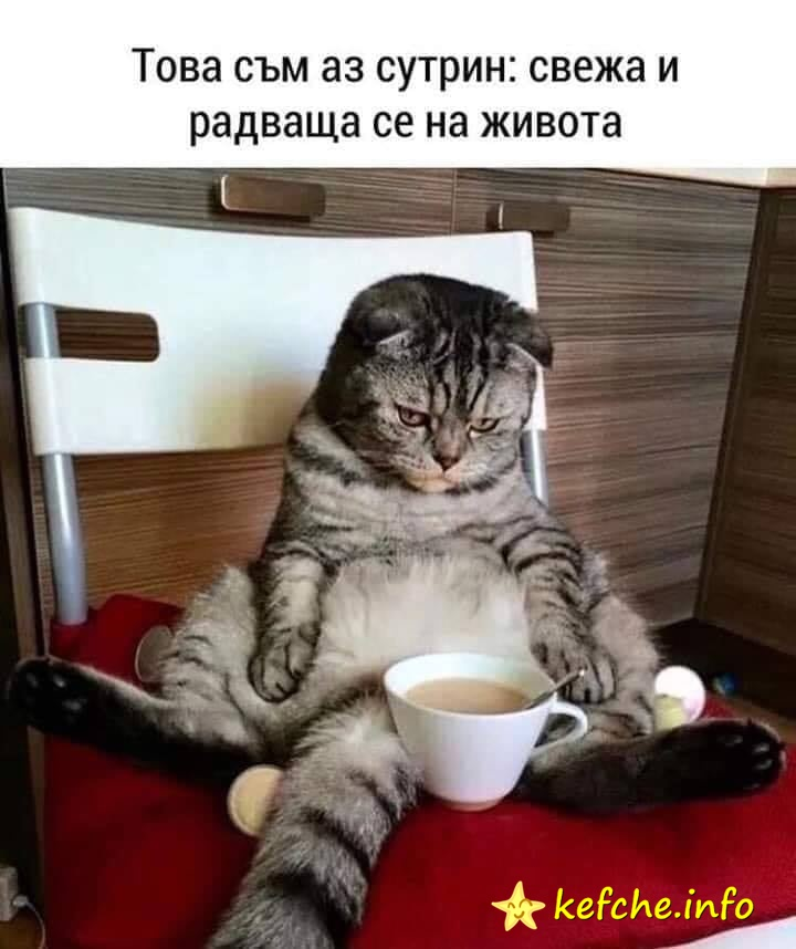 Това съм аз сутрин: свежа и радваща се на живота!